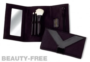 YSL brush set with case